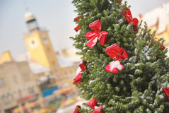 Large outdoor natural Christmas tree with red bows stock photography