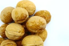 Large oval whole walnuts on white background royalty free stock images