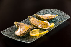 Large oysters with lemon zest on platter Stock Image