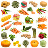 Large Page Of Fresh Vegetables Stock Photography