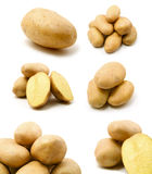 Large page of potatoes. Isolated on white ackground royalty free stock images
