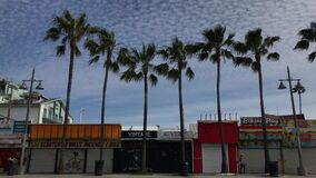 Large Palm Trees Dot Venice Beach Strip Mall 4K 30 fps