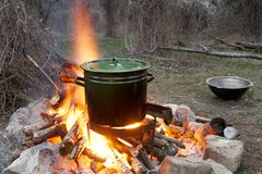 Cooking on a fire. Large a pan of food being cooked on a fire in the forest Royalty Free Stock Photos