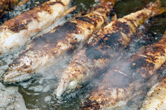 In a large pan lie some whole fried fishes. In a large pan lie next to each other some whole fried fishes with some steam around Royalty Free Stock Photos