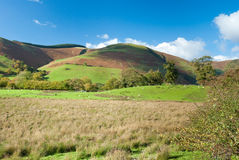 Large pastureland in Wales Royalty Free Stock Photo