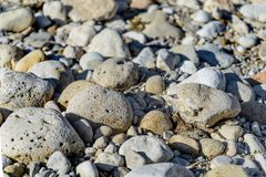 The large pebbles Stock Photography