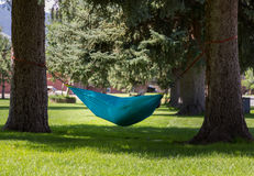 Large person reading book in hammock in park. Large person reading a novel in a hammock strung between two large tree trunks in a town park in Colorado Stock Images