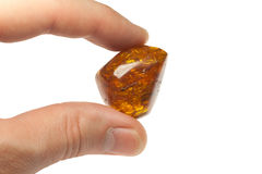 Large piece of amber Royalty Free Stock Photography