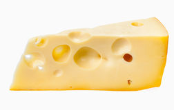 Large piece of cheese Royalty Free Stock Images