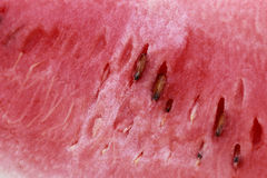 Large piece of fresh watermelon Royalty Free Stock Photos