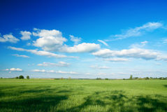 Large piece of land and blue c Stock Photography