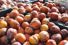 A Large Pile of Amigo Pluots at the Farmers Market royalty free stock image