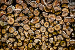 Large Pile of Cut Logs Royalty Free Stock Photography