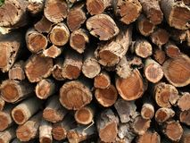 Large Pile of Firewood Royalty Free Stock Photo