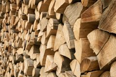 Large pile of firewood Stock Photography