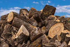 Large pile of firewood  blue sky and clouds stock image