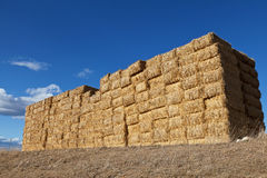 Large pile of hay bales Royalty Free Stock Images