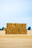 Large Pile of Hay Bales Stock Photography