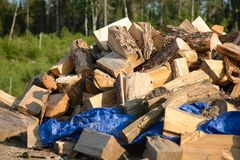 A Large Pile of Wood in Summer stock images