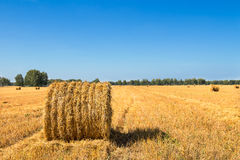 Large Piles of Hay Bales Royalty Free Stock Photography