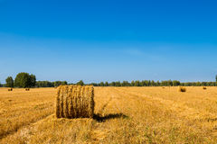 Large Piles of Hay Bales Royalty Free Stock Images