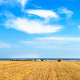 Large Piles of Hay Bales Royalty Free Stock Image