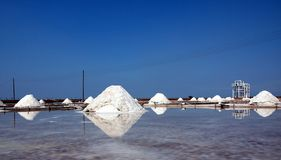 Large Piles of Sea salt Stock Images