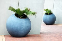Large plant pots Stock Photo