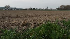 Large plowed field in Switzerland. Newly plowed and planted field. In the video you can rasmotret village in the background and a stock footage