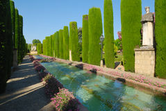 Large pond in Alcazar gardens Royalty Free Stock Images