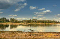 Large pond in the forest area Royalty Free Stock Photos