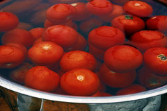 Large pot filled with water and washed tomatoes Royalty Free Stock Image