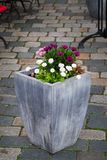 Large pot with plants. Outdoor concrete vase as a flowerbed and street decoration with some flowers Stock Image