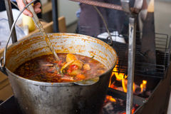Large pot of stew simmering over a fire Stock Photography