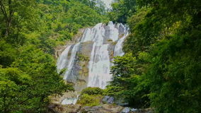 Large Powerful Waterfall among Tropical Jungle stock footage