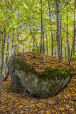 Large Precambrian Boulder in a Fall Forest - Ontario, Canada. Large Precambrian Boulder in a Fall Forest - Algonquin Provincial Park, Ontario, Canada royalty free stock photo