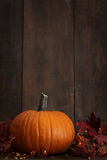 Large pumpkin with leaves against a wood Stock Photos