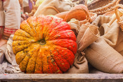 Large pumpkin in a wooden cart Royalty Free Stock Image
