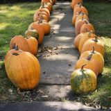 Large Pumpkins Along A Sidewalk Royalty Free Stock Photos