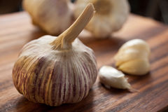 Large purple garlic bulb. Large piece of garlic in the foreground with a couple of peeled cloves and other garlic bulbs in the background, set on a wooden Royalty Free Stock Photos