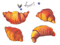 Large raster illustration dedicated to croissant. Hand drawn with color pencils and ink, good for french bakery.  on white Stock Photography