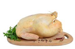 Large raw chicken broiler on a wooden stand, isolated on white background.  Royalty Free Stock Photos