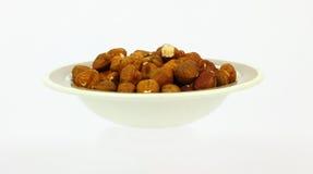 Large Raw Filbert Nuts Stock Image