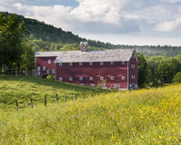 Large Red Barn in Summer Field. A massive multi-storey red barn on an old farm in upstate New York Royalty Free Stock Photos