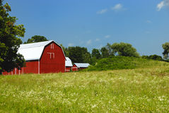 Large red barn with white roof. Stock Image