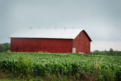 A large red barn with white roof in rural Kentucky. Royalty Free Stock Images