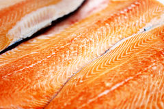 Large red fish salmon Royalty Free Stock Photos