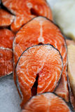 Large red fish salmon Stock Photo