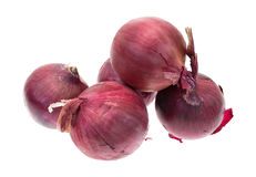 Large red onions on a white background Stock Images