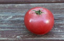 Large Red Ripe Tomato Royalty Free Stock Photos